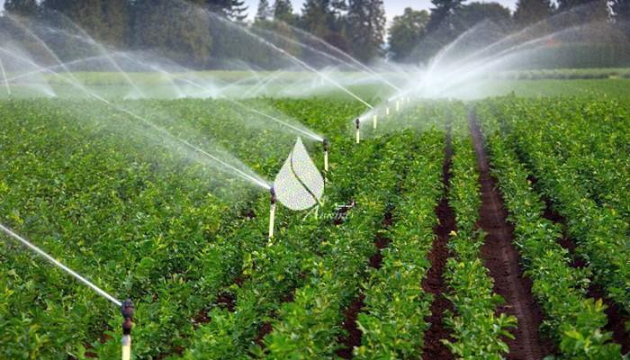 آشنایی با سیستم آبیاری بارانی و انواع آن